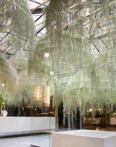 Fairytale Garden Installations : Patrick Nadeau Rainforest