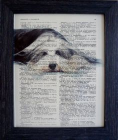 Dog art Bearded collie print on an vintage french dictionary page Bearded collie print for your wall mixed media(396)