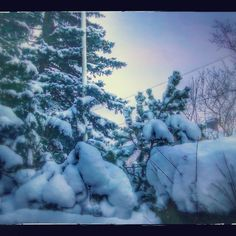 'Blue winter' on Picfair.com