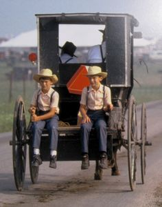 Horse & buggy, it's the Amish way!