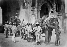 Elephant pulling a field gun, Indian Mutiny, c1858