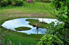 Bingöl-Yüzen Ada