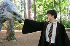 Harry Potter e o prisioneiro de Askaban.                                                                                                                                                                                 Mais