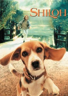Shiloh - I loved the film based on this book as a kid ;) need to read it Shiloh Book, Good Books, My Books, Newbery Award, All Family, Family Movies, Great Movies, Amazing Movies, Reading