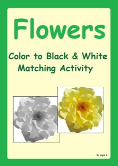 Flowers Color to Black & White Matching Activitty #autism #flowers For more resources follow https://www.pinterest.com/angelajuvic/autism-special-education-resources-angie-s-tpt-sto/