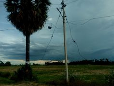 Village Photography, Utility Pole