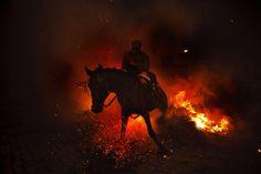 Jan. 16, 2013. A man rides a horse through a bonfire in San Bartolome de Pinares, Spain. (Daniel Ochoa de Olza—AP)