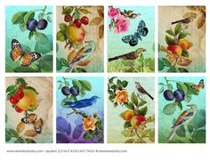 Opulence Atc Aceo Tags Digital Collage Sheet Download by download