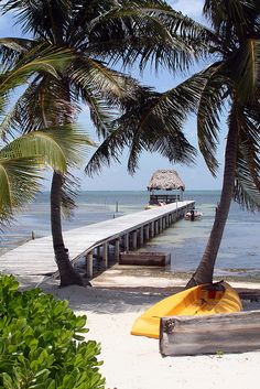 I swam off this pier when I lived in Ambergris Caye ~ Belize