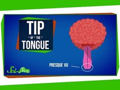 How Words Get Stuck on the Tip of Your Tongue - YouTube