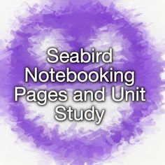 Seabird Notebooking Pages and Unit Study