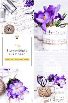 DIY Blumentöpfe aus Dosen und Papier   Upcycling & Frühlingsdeko   Filizity.com   DIY-Blog aus dem Rheinland #frühling #upcycling