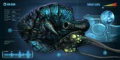 Reefback Subnautica Creatures, Deep Sea Creatures, Fantasy Creatures, Sea Dragon Leviathan, Subnautica Concept Art, Alien Plants, Underwater City, Beast Creature, Spaceship Concept