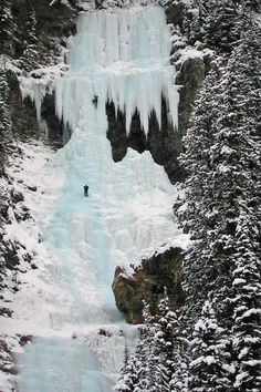 Water itself has an intrinsic blue color that is a result of its molecular structure and its behavior. The blue bouncing back can be vividly seen here, as a pair of brace (foolhardy?) climbers venture up a waterfall in the Banff National Park in Canada.