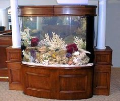 Examples of Custom and Standard Aquarium installations: freshwater and salt water aquariums Sea Aquarium, Saltwater Aquarium, Freshwater Aquarium, Aquarium Ideas, Salt And Water, Fresh Water, Cool Tanks, Awesome Tanks, 1 Fish 2 Fish