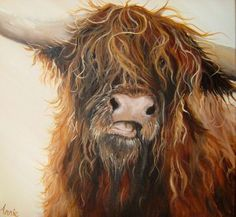 Hamish, Highland cattle, Annie Stillman