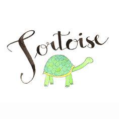 T comme Tortoise Tortue en français  Apprenons par SadlerAlison