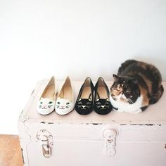 Cute cat shoes here Cool Cats, I Love Cats, Hate Cats, Cat Flats, Cat Shoes, Kitten Heels, Crazy Cat Lady, Crazy Cats, Gato Calico