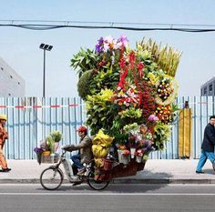 A flower vendor transporting his goods by bike in Istanbul.