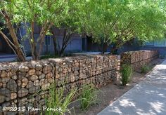 Digging | cool gardens in a hot climate | Page 9