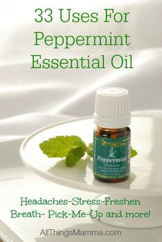 33 Uses For Peppermint Essential Oil