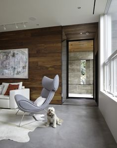 The Imola Chair (cute doggie not included). At BoConcept