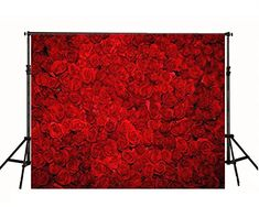 Red Rose Flowers Wall Photography Backdrop for Booth Studio Beautiful Floral Design Photo Backgrounds Photographic Digital Cloth Wallpaper Printed 00003 Camera Photography, Photography Backdrops, Wedding Photography, Red Flowers, Red Roses, Photo Backgrounds, Rose Wedding, Rose Petals, Beautiful Roses