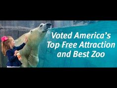 Saint Louis Zoo named Best Zoo in the nation!