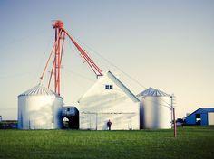 Farm, Champaign, Illinois.