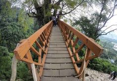 Tree House In Bogor! #tree #house #travel #destination #bogor #indonesia #journey