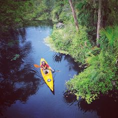 SWFL is a paddler's paradise!