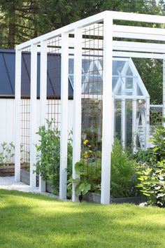 fence around pool - half the height, but use the wire frame for climbers. (have same steel wire veg garden - it's brilliant)