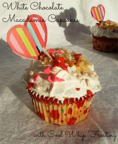 White Chocolate Macadamia Cupcakes with Cool Whip icing