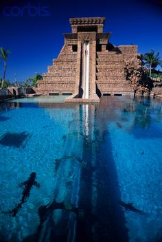Leap of Faith Water Slide. Paradise Island, Bahamas. Atlantis Resort's Leap of Faith water slide starts atop the Mayan Temple and travels underwater through a shark pool.