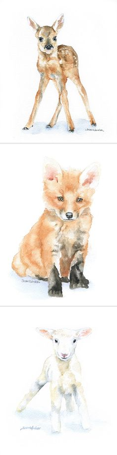 These water color prints would be great for a nursery :) by Susan Windsor Fine Art on ETSY.