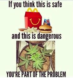 McDonald's is one of the most dangerous foods to consume. Marijuana is of the earth. Natural.