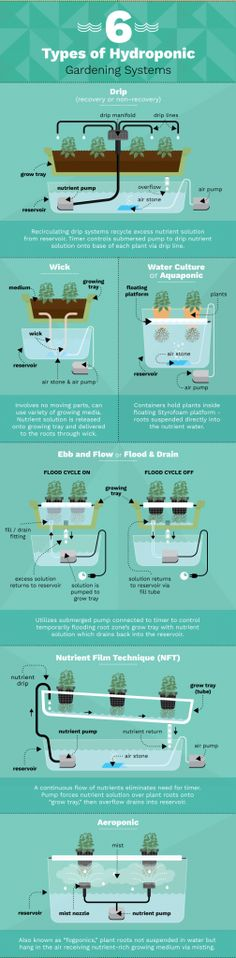 6 Different Hydroponic Gardening Systems For Growing Food... #hydroponicgardeningbackyards #hydroponicgardens
