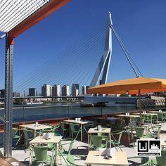Cafe Rotterdam next to the Erasmusbrug
