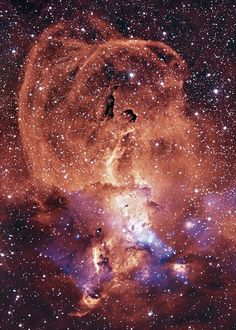 Sagittarius Arm of the Milky Way Galaxy Sagittarius are special!!