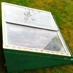 Old window turned into a mini green house. ...quasi pinteresting?..