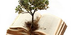 The Important of Our Hebrew Roots | Homeschool Blog