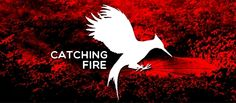 Catching Fire / Hunger Games