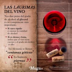 Es bonito ver las gotas o lágrimas de vino que se deslizan por la copa como la lluvia sobre el cristal, pero ¿sabes qué significan? ¡Aprende con Muga!  It´s nice to see the wine tears streaming down the cup just like the rain on a glass window, but do you actually know what that means? Learn with Muga!#lariojaapetece #winery #winelover #vinoteca #winetour #winestagram #healthy #art #cience #boards #barrel #WineInModeration #winelover #winelovers #wineculture #winelover #winetime #winetasting