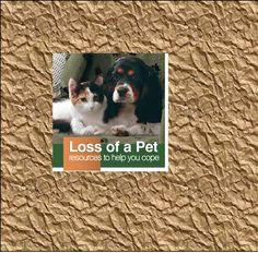 Link to resources to help you cope with the loss of a pet   aspca.org/pet-care/pet-loss