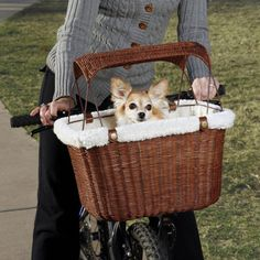 Wicker Basket Furniture on Solvit Small Pet Wicker Bike Basket