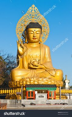 Buddha Statues : I'm sure many of you would have seen fat Buddha artefacts in your friends home,gardens,restaurants or even at your office. Laughing Buddha statues are one of the Amitabha Buddha, Gautama Buddha, Buddha Buddhism, Dalai Lama, Golden Buddha Statue, Buddha Statues, Mahayana Buddhism, Buddha Zen, Buddha Life