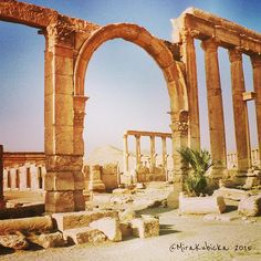 Palmyra 2007Syria #colonnade #column #outdoor #ruins #history #heritage #antica #antiquity #art #architecture #DiscoverCZ #display #design #museum #muzeum #syria #stone #sculpture #statue #temple #saint #street #city #abandoned #war