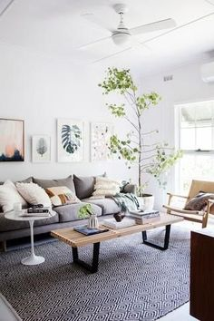 Bohemian Living Room Ideas And Inspiration Tailored Space Interiors Gold Coast Interior Design And