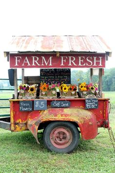 Such a classy display. Rusty Garden, Farm Gate, Flowers For Sale, Flower Cart, Cut Flower Garden, Sustainable Farming, Modern Ranch, Farm Stand, Flower Stands