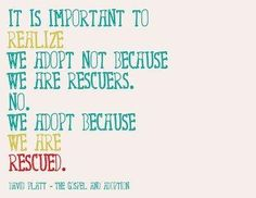 I could not be more pro-adoption..babies, pets, people in need, any type of adoption is beautiful.